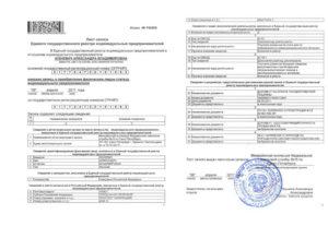 Какие документы выдают после регистрации ип 2019