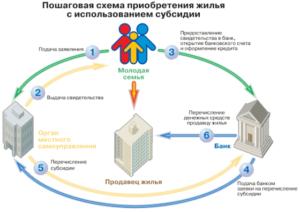 Сроки перечисления субсидии по программе молодая семья
