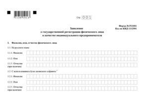 Заявление по форме р21001 на открытие ип