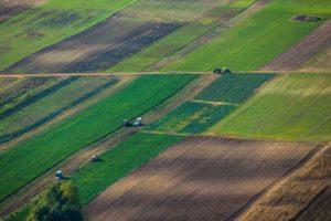Земли аренда земли у государства цена