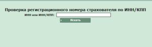 Фсс регистрационный номер страхователя по инн