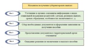 Какие нужны документы для получения губернаторского пособия