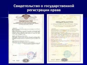 Свидетельства о государственной регистрации права реквизиты