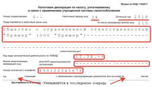 Пример заполнения декларации усн ип 2019 нулевая