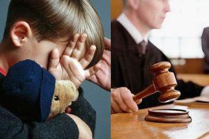 Лишение родительских прав иностранного гражданина судебная практика