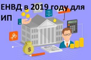 Ставка енвд в 2019 году для ип