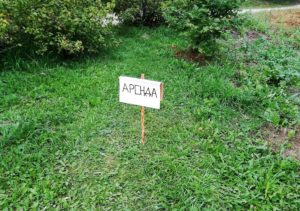 Аренда земли на 49 лет закон стоимость