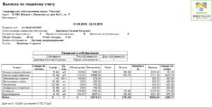 Образец выписки из лицевого счета жилого помещения