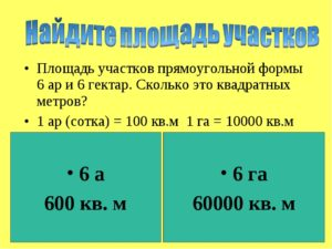 1 гектар земли сколько это в метрах