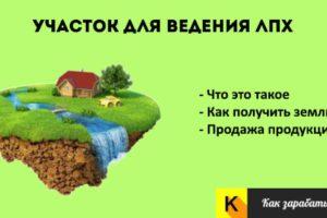 Как получить землю для лпх бесплатно