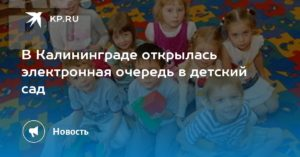 Калининград встать на очередь на детский сад