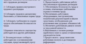 Трудовой кодекс рф обязанности работника и работодателя