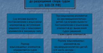 Сроки обращения за алиментами взыскание алиментов до разрешения спора судом